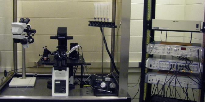 Electrophysiology setup