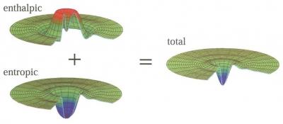 Enthalpy-entropy compensation at the desolvation barrier to folding.