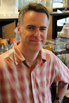 Justin Nodwell, Chair Department of Biochemistry